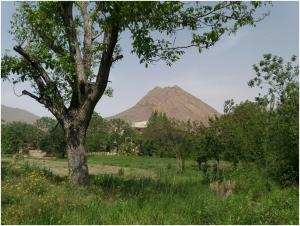 روستای برزک در کاشان
