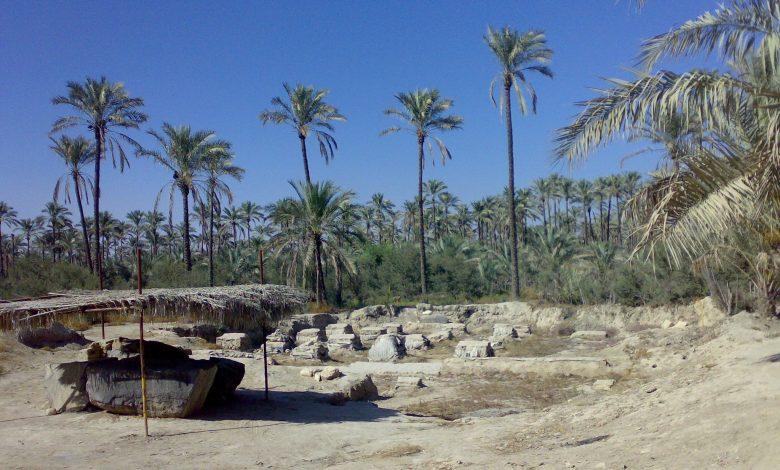 روستای درودگاه در ۱۴ کیلومتری شمال غربی برازجان یا 4 کیلومتری جاده برازجان ـ گناوه، از توابع بخش سعدآباد در شهرستان دشتستان استان بوشهر است