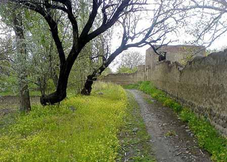 روستای ینگجه آذرشهر