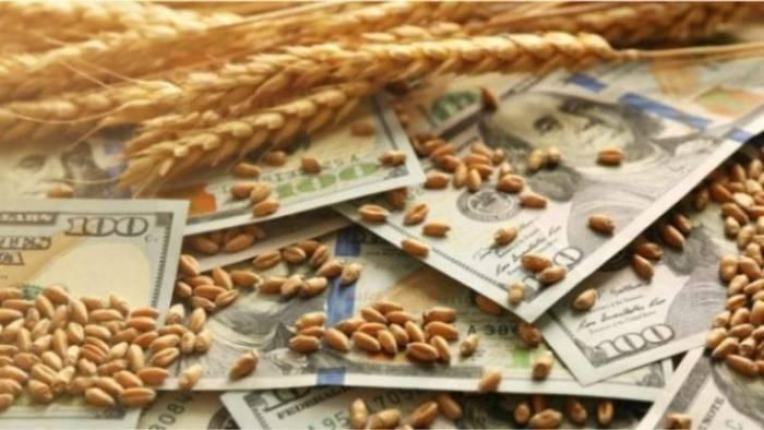کاهش تولید جهانی برنج، گندم و ذرت