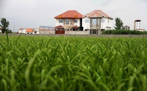 تاثیر مشکلات مالی کشاورززادگان بر فروش اراضی کشاورزان
