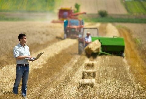 کشاورزی مبتنی بر قرارداد، الگویی مناسب برای توسعه کشاورزی