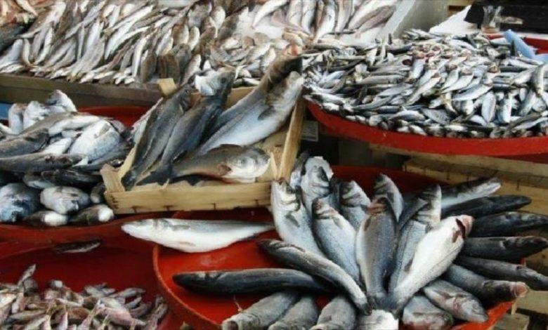 صادرات محصولات شیلاتی در سراشیبی