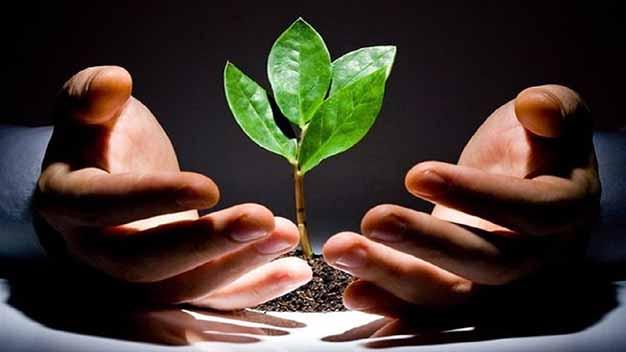 اهمیت استفاده از ظرفیتهای کارآفرینی در بخش کشاورزی