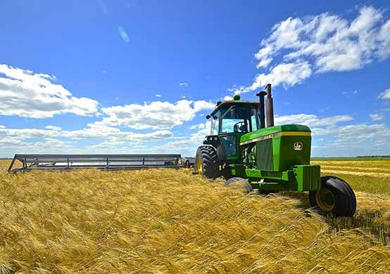 توصيه های هواشناسی کشاورزی از تاريخ 24 دی لغايت 28 دی 99