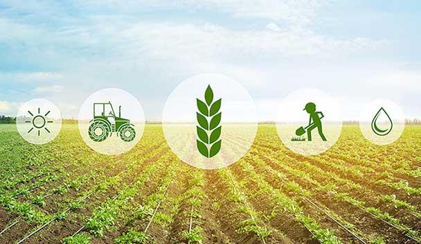 توصيه های هواشناسی کشاورزی از تاريخ 8 بهمن لغايت 12 بهمن ماه 1399