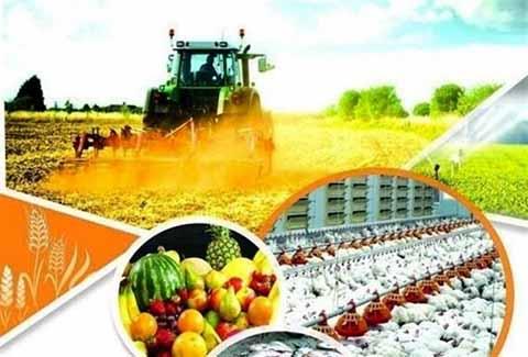 فرصت ویژه برای صادرات محصولات کشاورزی کردستان به ارمنستان