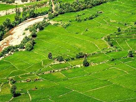 برترینهای بخش کشاورزی مازندران تجلیل شدند