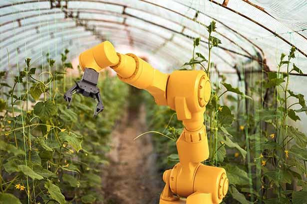 رباتهای هوشمند کشاورزی راهکار تامین امنیت غذایی جهان در سال 2050