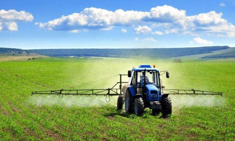 نقش شهرکهای کشاورزی در توسعه کشاورزی صنعتی
