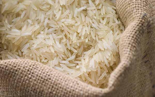 نگرانی شالیکاران مازندران از زمزمههای واردات برنج خارجی