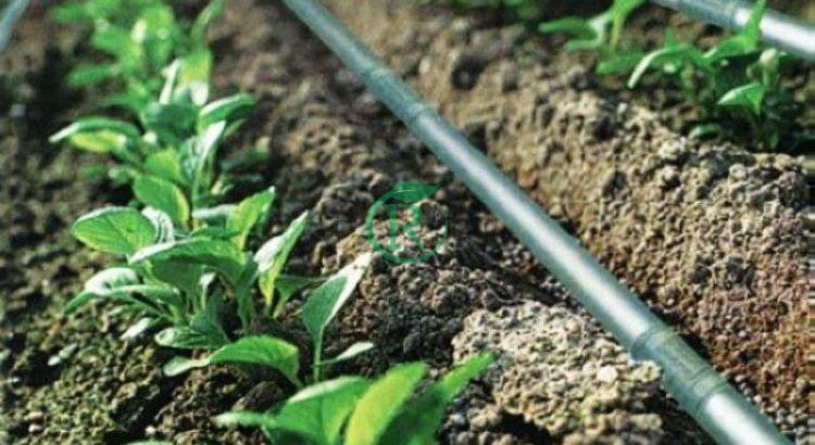 تجهیزات کشاورزی پارس دریپ