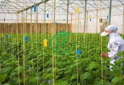 شرکت پیام آوران طبیعت سبز مشاور ، طراح و مجری گلخانه های مدرن
