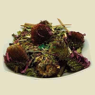 گیاهان داروئی برگ سبز
