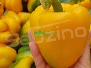 تامین کننده محصولات کشاورزی صادراتی