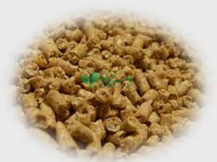 تولید خوراک دام و طیور زرین امروان