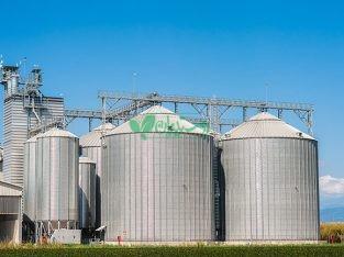 تولید کننده خوراک دام و طیور شرکت دانه چین