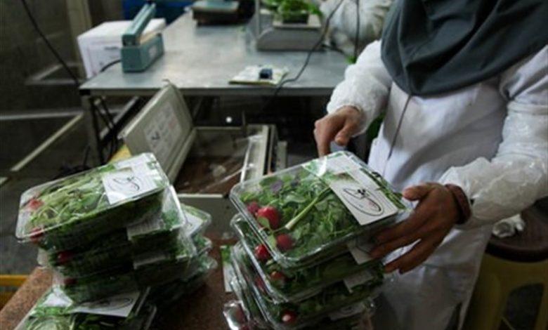 کارگاه بسته بندی سبزیجات