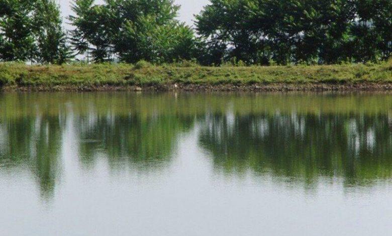 تامین ۲۰ درصد آب شالیزارهای گیلان توسط آبندانها