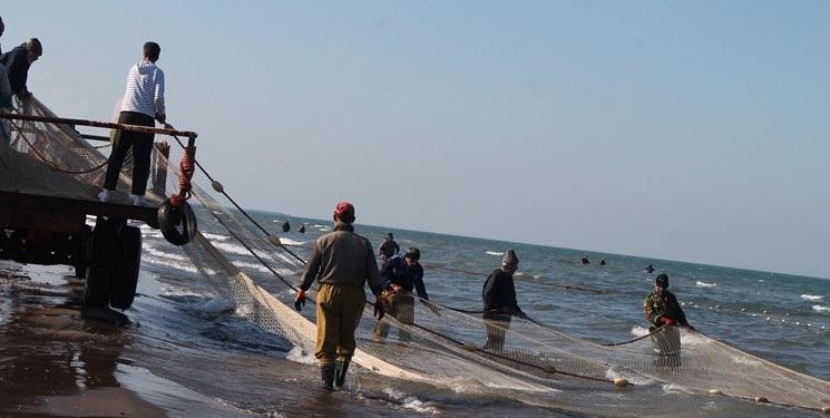 تسنیم گزارش میدهد؛ رونق صیادی با صادرات محصولات شیلاتی در مازندران