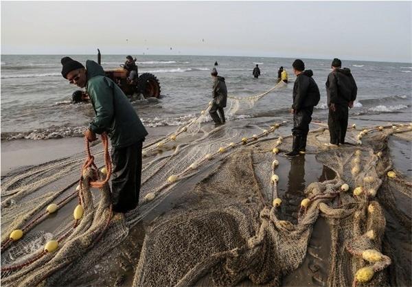 فصل صید ماهیان استخوانی در مازندران تمدید نمیشود