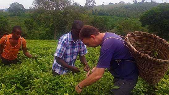 برگزاری نشست مجازی «ظرفیتهای گردشگری کشاورزی»