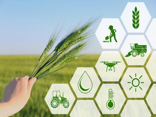 مراکز نوآوری به کمک کشاورزی میآیند