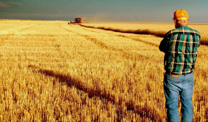 20 تولیدکننده بزرگ محصولات کشاورزی در جهان به تفکیک قاره ها