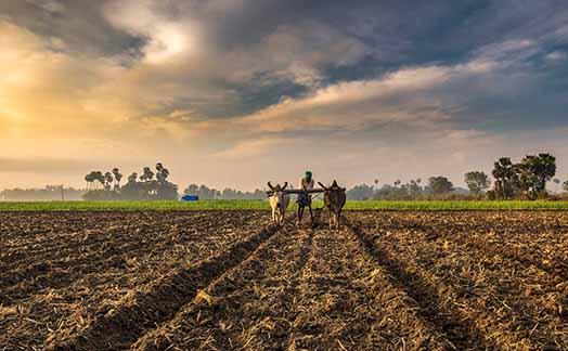 توصيه های هواشناسی کشاورزی از تاريخ 20 مهر لغايت 23 مهر 99