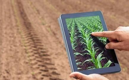 توصيه های هواشناسی کشاورزی از تاريخ 23 مهر لغايت 27 مهر 99