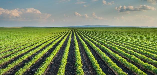 توصيه های هواشناسی کشاورزی از تاريخ 27 مهر لغايت 30 مهر 99