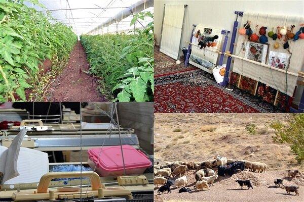 گام های مثبتی برای کارآفرینی در روستاهای مازندران برداشته شد