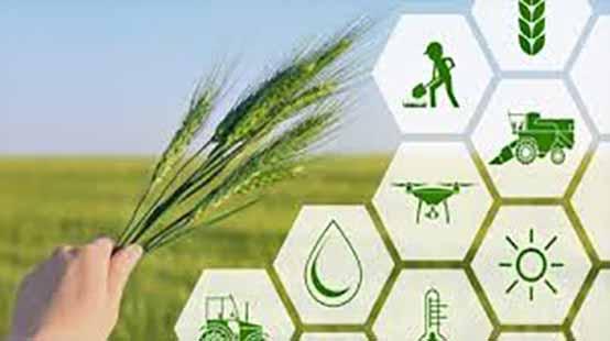 حوزه کشاورزی صاحب شهرک نوآوری و استارتاپی میشود