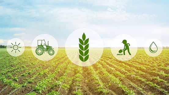 توصيه های هواشناسی کشاورزی از تاريخ 16 آذر لغايت 19 آذر 99