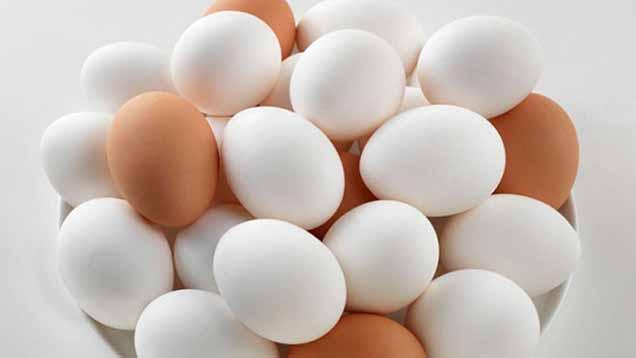 سرانجام قیمت مرغ و تخممرغ با حذف ارز ۴۲۰۰ تومانی