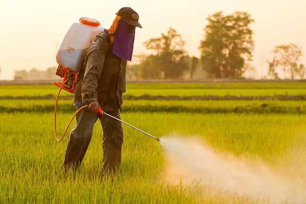 تاثیر مصرف متعادل سموم و نهادهها بر افزایش کیفیت و کمیت محصولات کشاورزی