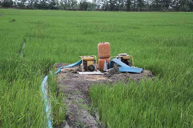خاموشی ۴ ساعته برق چاههای کشاورزی!/ خسارات سنگین تولیدکنندگان