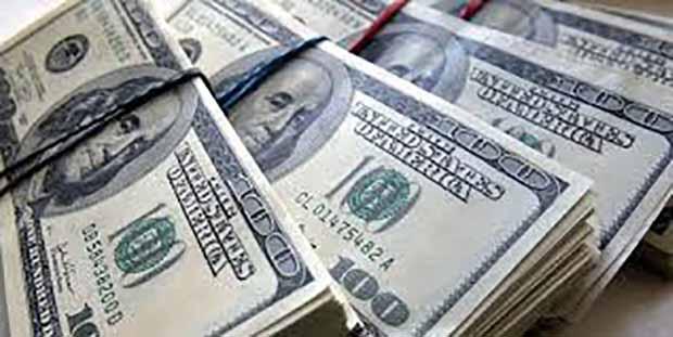 وابستگی ایران به ۱۶ میلیون تن نهاده دام و دلارهایی که حراج میشود/ مدیر وزارت جهاد: امکان تولید ۵ میلیون تن در ۱ سال را داریم