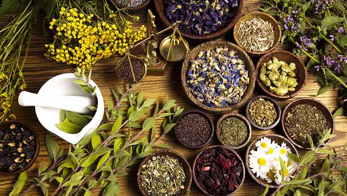 استخراج مواد موثره گران گیاهان دارویی توسط شرکت دانشبنیان