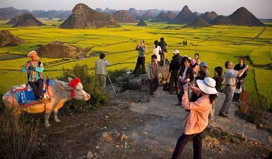 بوکان از قابلیت صنعت گردشگری کشاورزی خوبی برخوردارست