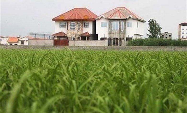 رقابت نابرابر بخش کشاورزی با ویلاسازی در گیلان