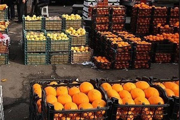 انتقاد صادرکنندگان از ممنوعیت صادرات میوه تصمیمات خلقالساعه تجاری به اعتبار ایران لطمه میزند