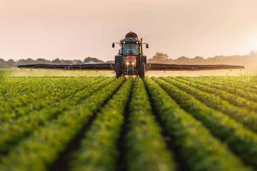 جنوب کرمان پایلوت کشاورزی قراردادی کشور شد