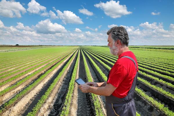 فقط 5 درصد کشاورزان تحصیلات دانشگاهی دارند