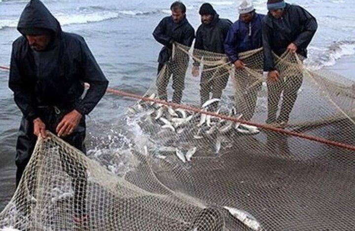 ایران در رتبه ۱۲ جهانی صید تُن ماهیان تجاری