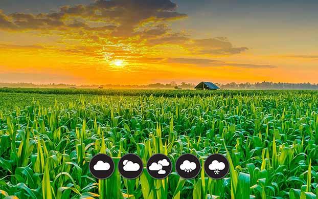 توصيه های هواشناسی کشاورزی از تاريخ 25 لغايت 29 فروردین 1400