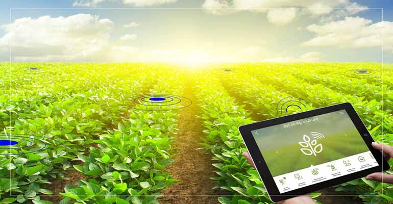 توصيه های هواشناسی کشاورزی از تاريخ 5 لغايت 8 اردیبهشت 1400