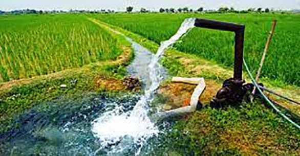 سیستم کهنه مدیریت آب در کشاورزی مازندران