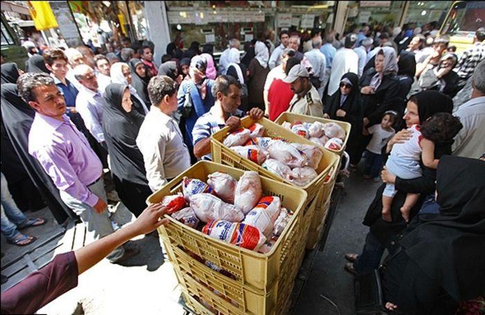 شرط اصلی ایجاد ثبات در بازار مرغ، نظارت بر توزیع است