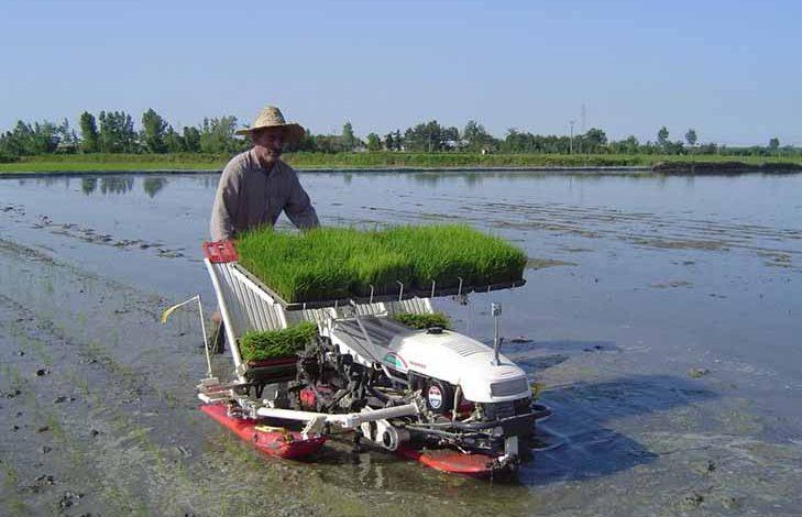کرونا؛ کشاورزی مازندران را مکانیزه کرد